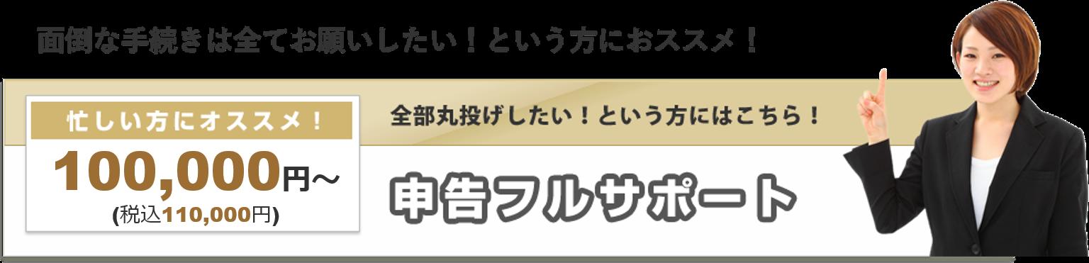 申告フルサポート 忙しい方にオススメ 100,000円~